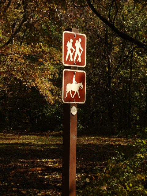 Sign post with hiker symbol on top and horse symbol below.